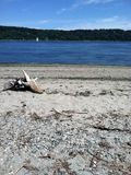 Пляж песка Стоковая Фотография RF