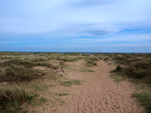 Пляж песков, лес Tentsmuir, Tayport Стоковые Изображения RF
