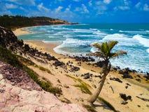 Пляж пипы в Бразилии Стоковые Фото