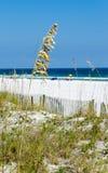 Пляж побережья мексиканского залива Стоковое Фото