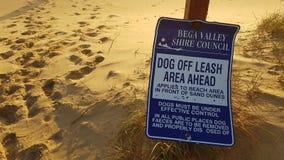 Пляж -поводка Стоковое Изображение