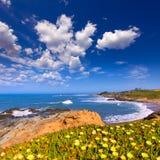 Пляж положения полости фасоли Калифорнии в Cabrillo Hwy стоковое изображение rf