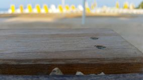 Пляж предпосылки Стоковое Изображение RF