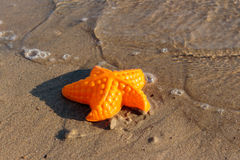 Пляж развевает морские звёзды и покрашенные игрушки Стоковые Изображения
