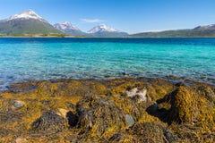 Пляж рая Lofoten Стоковая Фотография
