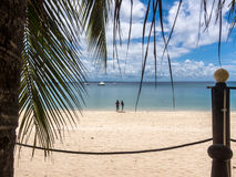Пляж рая Pemba, северный Мозамбик Стоковое фото RF