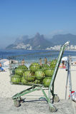 Пляж Рио-де-Жанейро Бразилия Ipanema кокосов Стоковые Фотографии RF