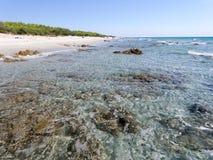 Пляж Сардиния Италия Bidda Розы Стоковые Фото