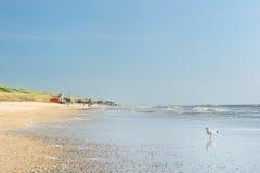 Пляж Северного моря Стоковое фото RF