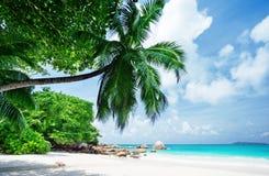 пляж Сейшельские островы тропические Стоковое Фото
