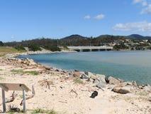 Пляж сталей, Scamander, Тасмания стоковое фото rf