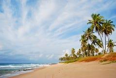 Пляж Стеллы Maris Стоковая Фотография