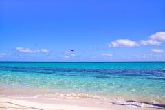 Пляж с белым песком с изумительно чистой водой, островом Австралией цапли Стоковые Изображения RF