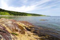 Пляж с камнями Стоковые Изображения RF
