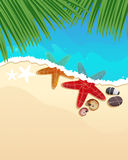 Пляж с морскими звёздами и ветвями ладони Стоковая Фотография
