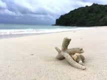 Пляж с океаном на предпосылке Стоковое Изображение
