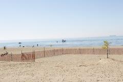 Пляж с одиночным деревом Стоковое Фото