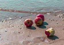 Пляж с 4 яблоками Стоковая Фотография RF
