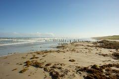 Пляж Техаса Стоковая Фотография