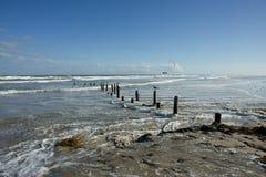 Пляж Техаса Стоковые Фото