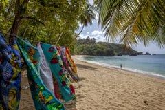 Пляж Тобаго стоковое изображение rf
