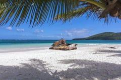 Пляж фламенко стоковое изображение