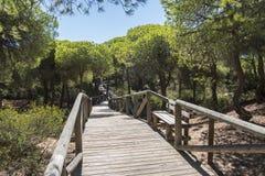 Пляж чистосердечности Punta, расписание дежурств, Кадис, Испания Удя плотина, плотина рыб, Стоковое Изображение