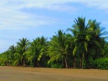 Пляж Ballena Стоковые Изображения