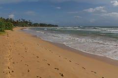 Пляж Bentota Стоковое Изображение RF