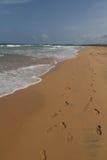 Пляж Bentota Стоковое фото RF