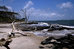 Пляж Blackrock стоковые изображения