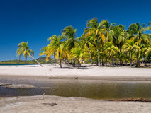 Пляж Carrillo в близко самары Стоковые Изображения
