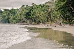 Пляж Cocles Стоковые Фото