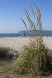 Пляж Coronado стоковое фото rf