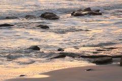 Пляж Cresent, восход солнца Флориды Стоковое Изображение RF