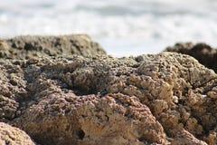 Пляж Deerfield Стоковые Фото
