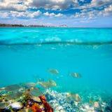 Пляж Denia Аликанте Marineta Casiana удит под водой Стоковая Фотография RF