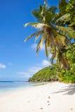 Пляж Digue Ла Стоковые Фотографии RF