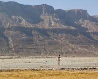 Пляж Ein Gedi мертвое море Израиля Стоковые Фотографии RF