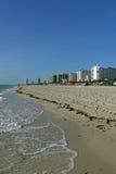 пляж florida miami США Стоковые Изображения