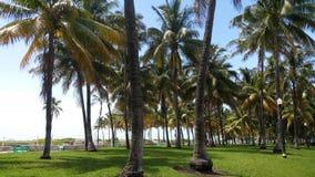 пляж florida miami стоковое изображение rf