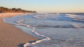 пляж florida naples видеоматериал