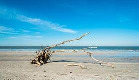 пляж Fort Myers Стоковая Фотография