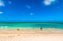 Пляж Kailua в Оаху, Гаваи Стоковое Изображение RF