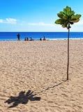 Пляж Kuta - Бали 001 Стоковое Изображение