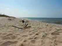 Пляж Lake Michigan стоковые фото