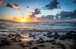 Пляж Laniakea, Гаваи Стоковые Фотографии RF
