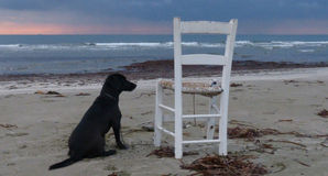 Пляж Makenzy Стоковое Фото