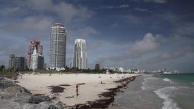 пляж miami сток-видео