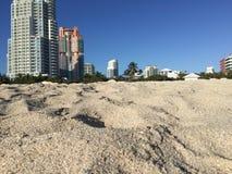 пляж miami стоковое фото